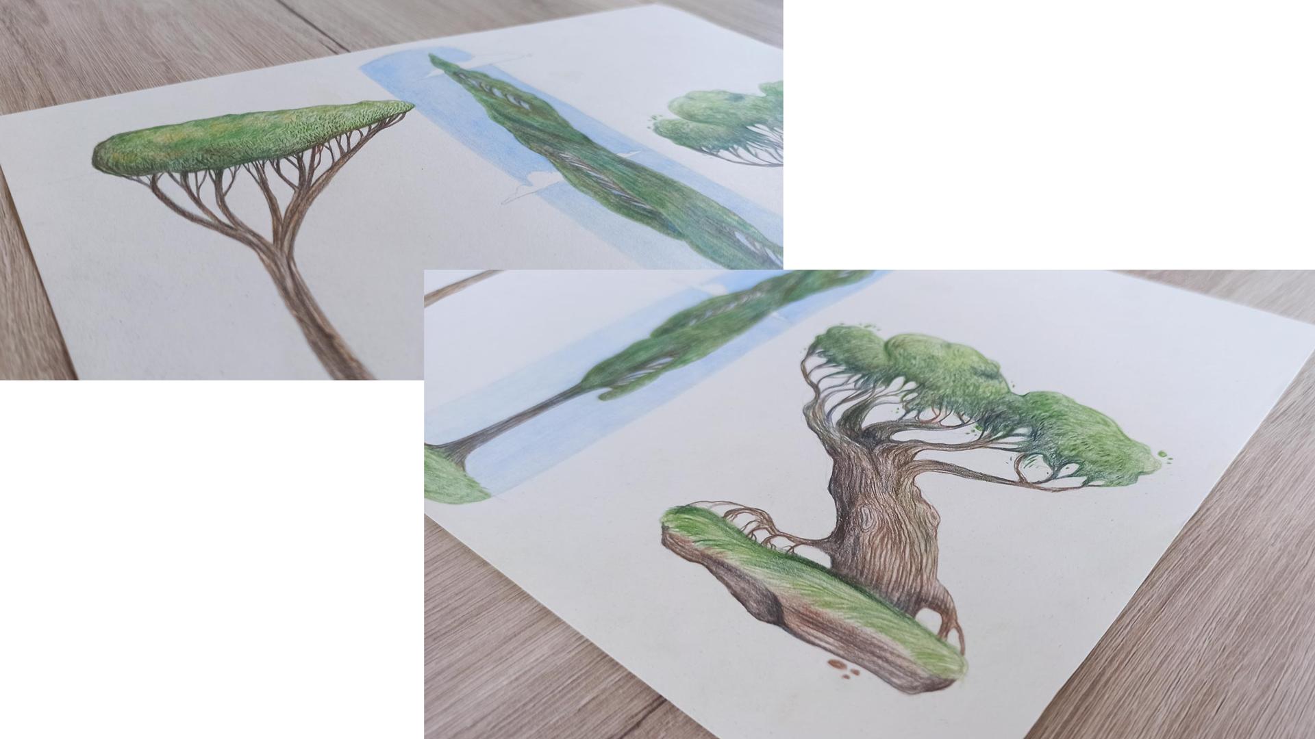 alberi-dettaglio-montaggio