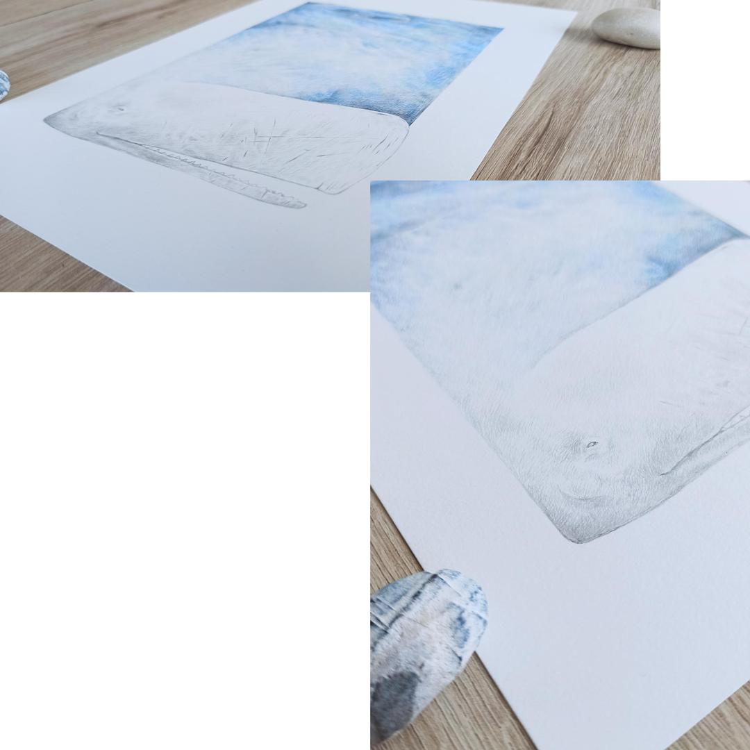 mobydick-dettaglio-montaggio